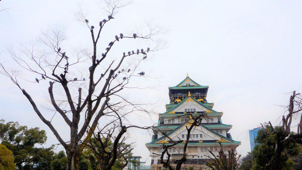 100名城你去过几座?票选日本最美名城TOP10